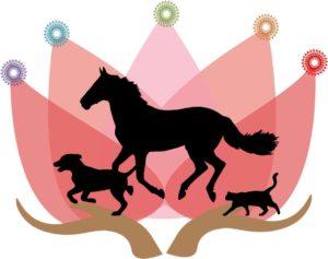 Soin énergétique chevaux