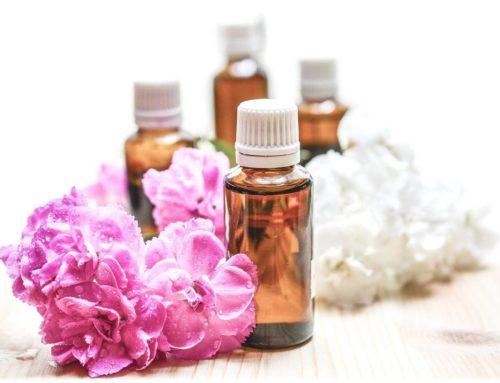 L'aromathérapie pour les animaux